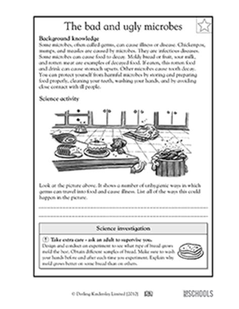 Germs For Worksheets by 5th Grade Science Worksheets All About Germs Greatschools