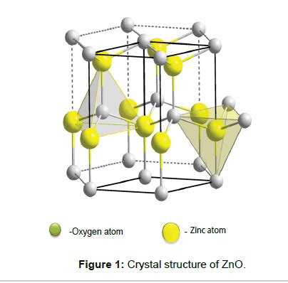 tissue science engineering crystal structure
