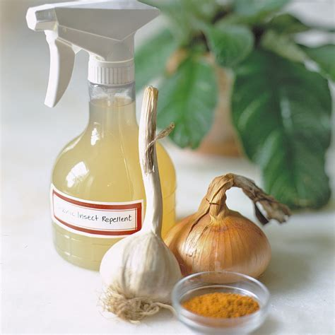 Natural Pest Repellent   Martha Stewart