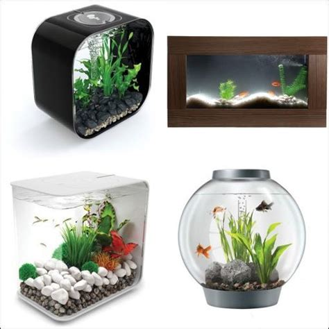 aquarium design guidelines aquarium design et moderne comparez les prix avec le