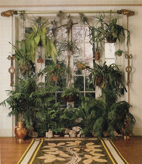 plantsforsam plants indoor garden indoor plants