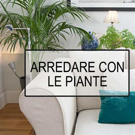 arredare con le piante da interno arredoverticale consigli e istruzioni per arredare con