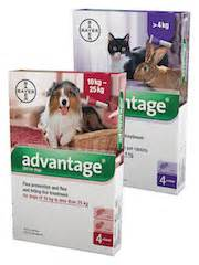 Pet Shed Promo by Pet Shed Pet Supplies At Discount Prices