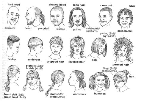 hair style esl el aula de isa vocabulary