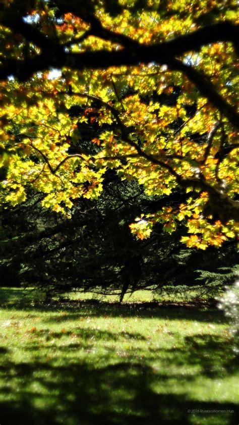 imagenes abstractas hd verticales 1080 x 1920 fondo de pantalla del paisaje full hd