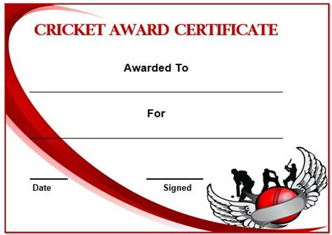 cricket certificate templates 22 well designed cricket certificate templates free word