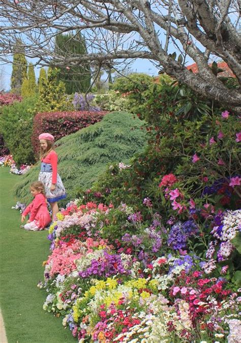 study of flower colours in the garden all year colour study learn garden design at home
