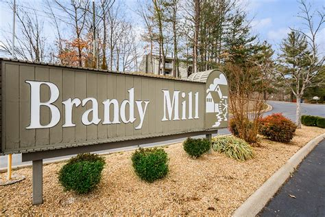 One Wilcox Apartments Kingsport Tn Amenities Mill Apartments In Kingsport Tennessee