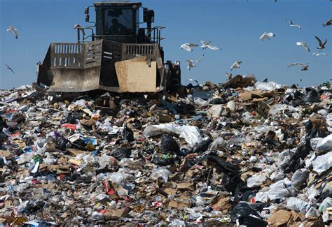 Where To Dump by The Menace Of Landfills In Kuwait Ecomena