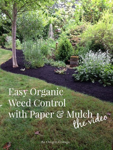 Landscape Fabric To Kill Grass 17 Best Images About Weeds On Landscape Fabric