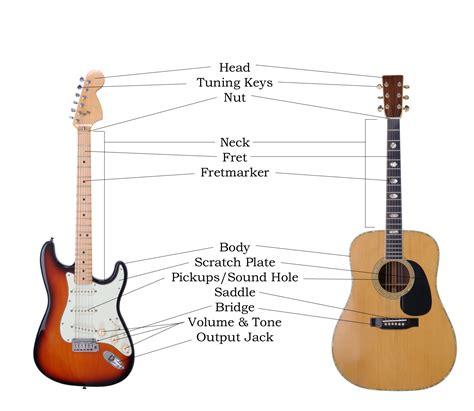 guitar homestudy anatomy of the guitar