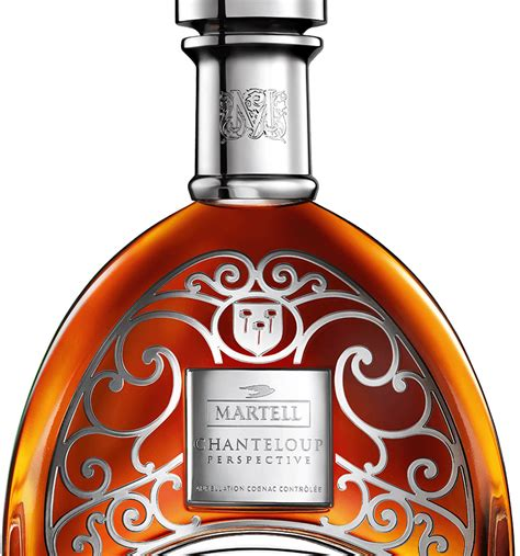 Punch Home Design Essentials martell 174 cognac chanteloup perspective