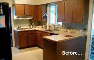 Redoing Kitchen Cabinets Yourself by Roundup 10 Inspiring Kitchen Cabinet Makeovers Kitchen