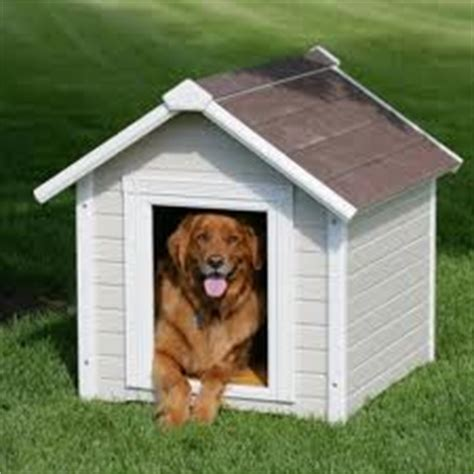 build  dog house plans