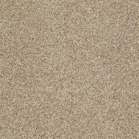 Home Decorators Carpet by Home Decorators Collection Carpet Sle Opulence In