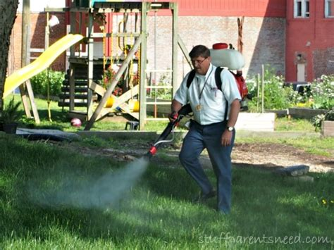 Eliminate Mosquitoes In Backyard by Backyard Mosquito Treatment Family Window Cleaning And