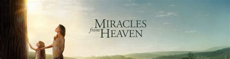 Miracles In Heaven Free Miracles From Heaven Church Downend