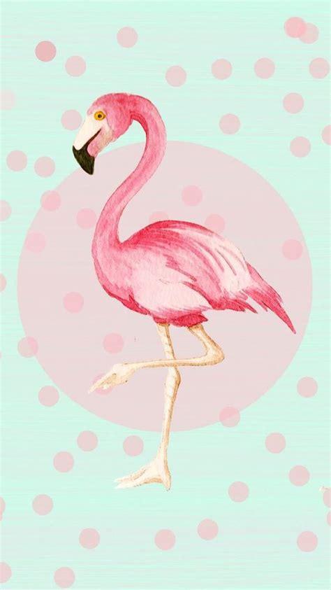 flamingo wallpaper nyc fotos on pinterest