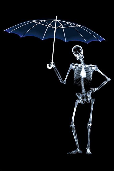 funhumor  ray boy   blue umbrella ipad iphone