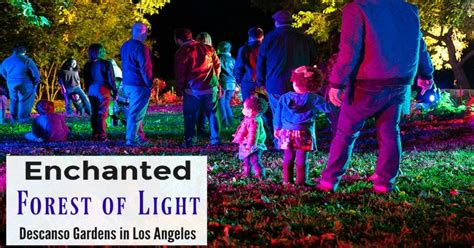 Discount Tickets To Enchanted Forest Of Light At Descanso La Zoo Lights Discount Offer Socal Field Trips