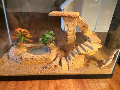 Leopard Gecko Tank Decor by 1000 Ideas About Leopard Home Decor On Home