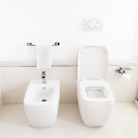 Bidet Health Benefits bidets vs toilet paper 9 bidet benefits