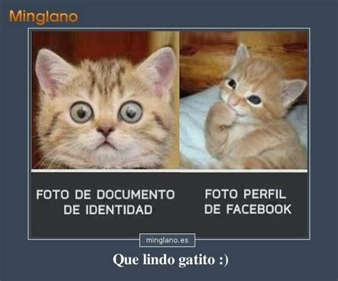 imagenes lindas con frases trackid sp 006 imagens de amor para facebook trackid sp 006 imagens de