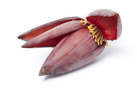 mudah memasak jantung pisang  enak bebas pahit