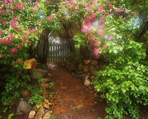 Garden Gate Flowers Author Catherine Castle