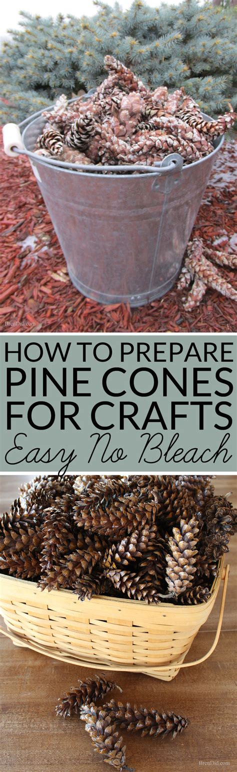 where to buy pine cones for crafts how to prepare pine cones for crafts bren did