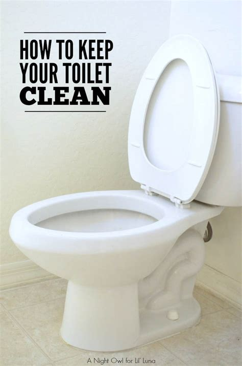 how to toilet a at how to keep your toilet clean