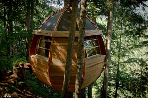 log tree house plans a treehouse gone viral price tags