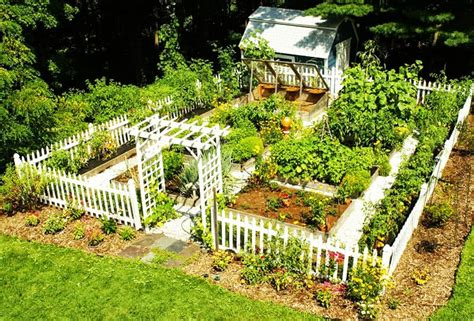 How To Prepare Your Garden For Spring Planting How To Prepare Vegetable Garden