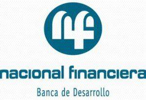 cadenas productivas nafin mx nafinsa todo lo que debe saber de nacional financiera