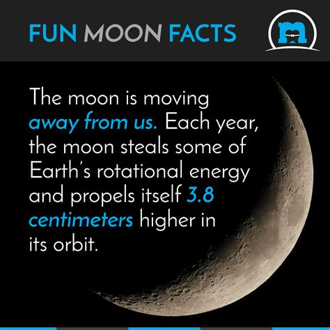 the teahouse of the august moon books moon facts where is the moon going moon orthodontics