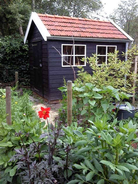 Painted Garden Sheds by 25 Best Ideas About Painted Shed On Shed