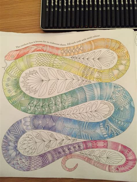 13 best images about animal kingdom on pinterest monkey animal kingdom colouring book snail 120 best