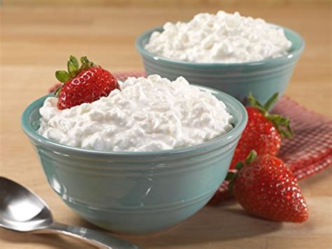 cottage cheese price mountain house cottage cheese sports in the uae see
