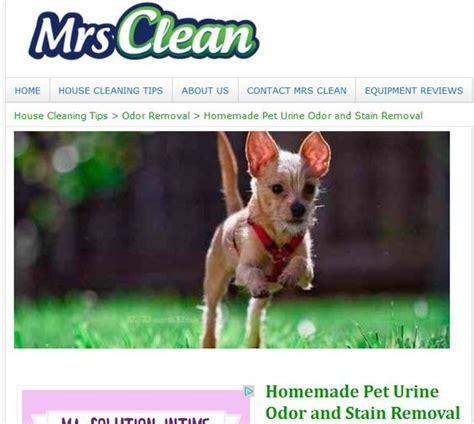 homemade dog shoo for good smell pet odors step by step instructions and pets on pinterest