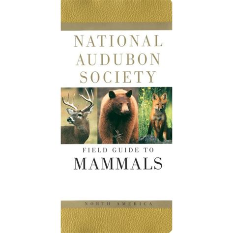 mammals national audubon society field guide mammal
