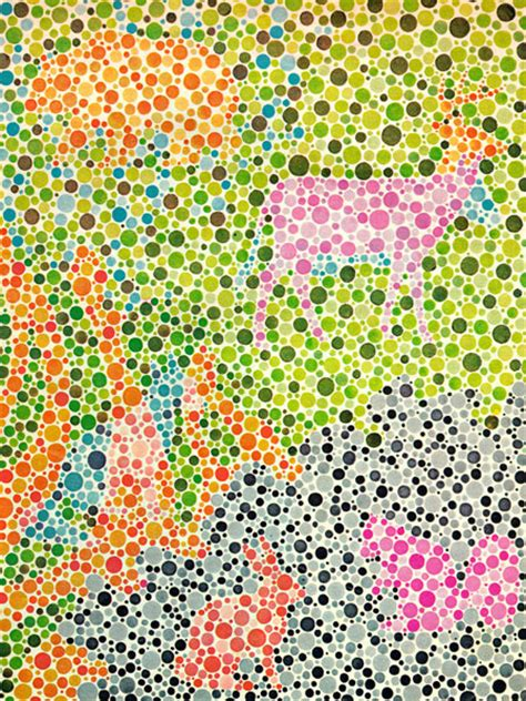 Color Blind Test For Toddlers colorblindness test for children