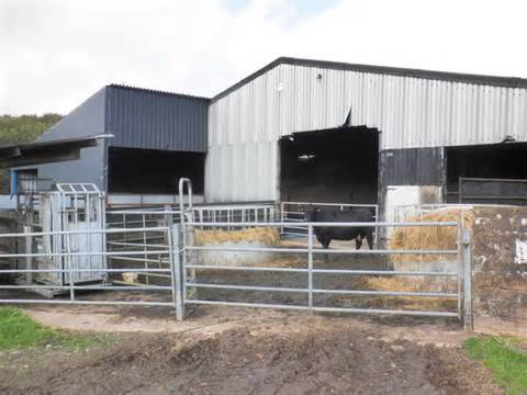 Cattle Sheds For Sale by Barns Plans Studio Design Gallery Best Design