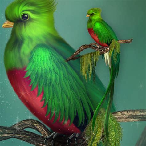 jaguarwoman s quetzal bird jaguarwoman rare amp powerful