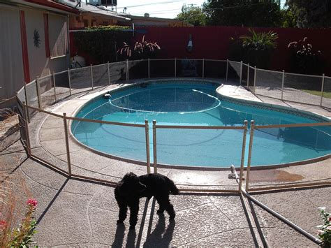 removable pool fence removable pool safety fences vs permanent pool fences tucson pool fence llc