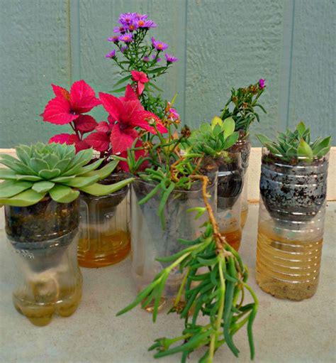 Water Bottle Planter by Plastic Bottle Planters Mikeandmollyshouse