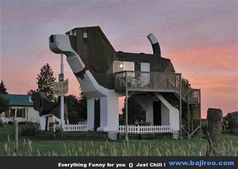 funny houses dog house morgan pinterest
