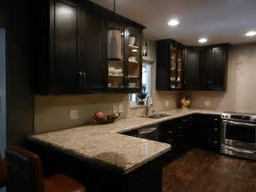 kitchen cabinets espresso espresso kitchen cabinets in 9 sleek and premium style homeideasblog com
