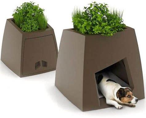 box dog house multipurpose planter box dog house garden pinterest