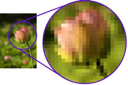format file gambar raster raster bitmap vs vector