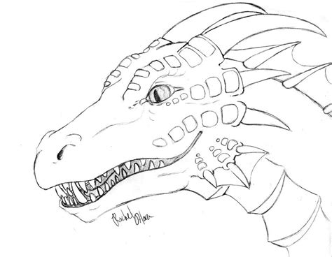 coloring pages of dragon heads detailed coloring pages for adults detailed dragon